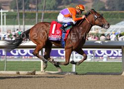 Beholder wins the BC Juvy Fillies