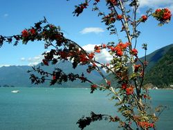 Le lac Harrison dans toute sa splendeur