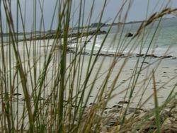 Urlaub mit Hund Bretagne 9