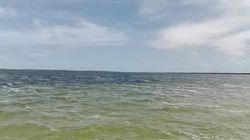 Kosi lake