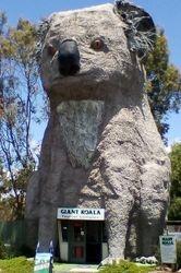 The Big Koala at Dadswell Bridge