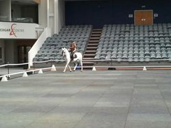 Practising my moves in the arena before the show