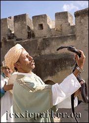 Snake Charmer,Tangier