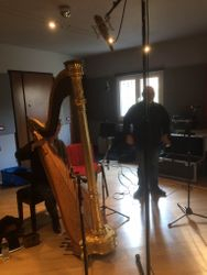 Getting the harp microphones all checked