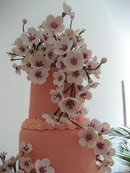 Cherry Blossom Gumpaste