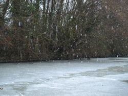 More snow