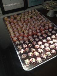 Cupcake Minies