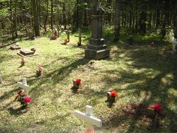 The O'Rourke family plot