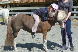 Pony LOVE!!