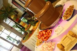 Chocolate Fountain and Fruit palm tree hire Blott country club