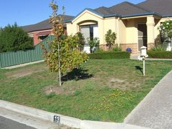 Before tired lawn