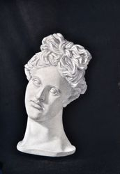 Cast Drawing of Apollo Belvedere Head