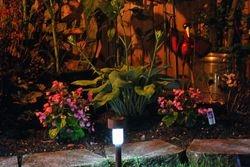 Lindys flower garden nights 4