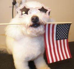 Hey, I'll Carry The Flag