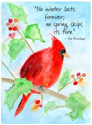 Cardinal Wisdom