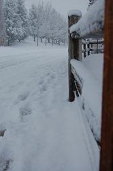 Winter in Reno, Nevada