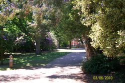 The Arboretum, Christchurch Park