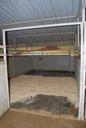 Inside the 12x20 stalls
