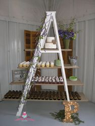 Ladder Display
