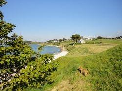Urlaub mit Hund Bretagne 7