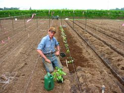 Starting to plant Seedlings May 23.