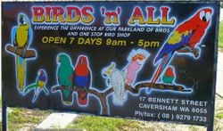 Welcome to Birds 'n' All