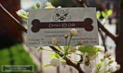 Spring Business Cards 2015
