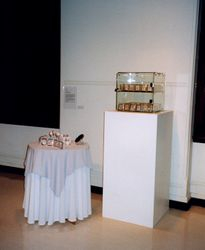 'Identiparts', installation at Object Galleries, Sydney, 1999