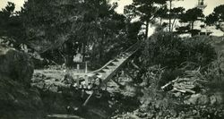 Discovery Island Light House Steps in 1916