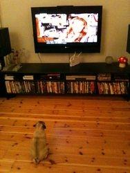 Kokkos is watching TV