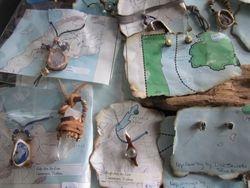 Kelp Jewelry by Lise Saurette, Tofino