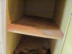 Kitchen Cabinet (before)