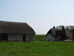 Thatched Cottage and Barn