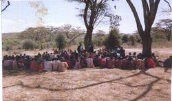 Maasais in the Bush