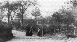 Blackheath. 1882.