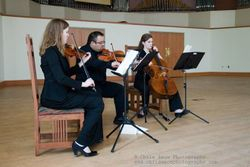 Horizon Strings Group