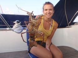 Becky's birthday lobster