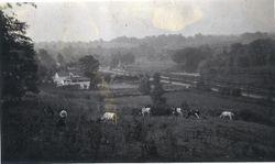 Valley View around 1914