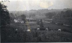 William Knolton Farm Canal Rd 1914