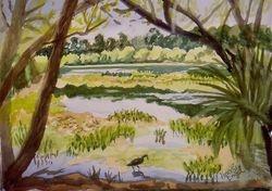 Ollie's Pond II