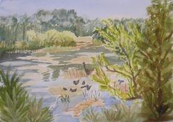 Ollie's Pond I