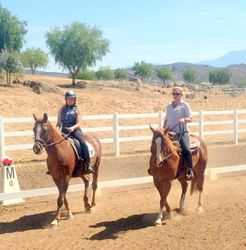 One on One Hands on teaching Western Dressage