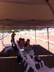 Auditors Western Dressage Clinic