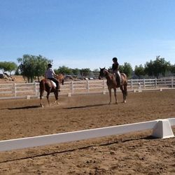 One on One Clinic Instruction Western Dressage