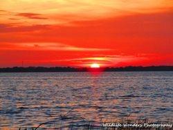 Sunset in Tavares