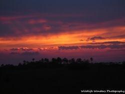 Everglades prairie sunset