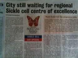 WSCD Center of excellence artical