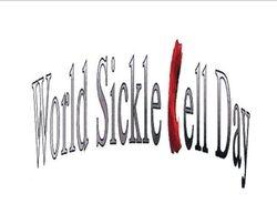 First WSCD Logo