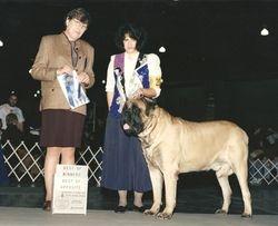Kennel Club of Philadelphia