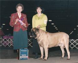 Camden County Kennel Club